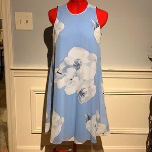 Blue and white sundress